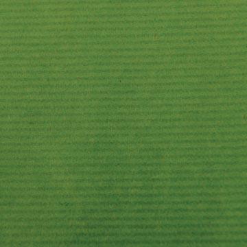 Canson kraftpapier ft 68 x 300 cm, groen